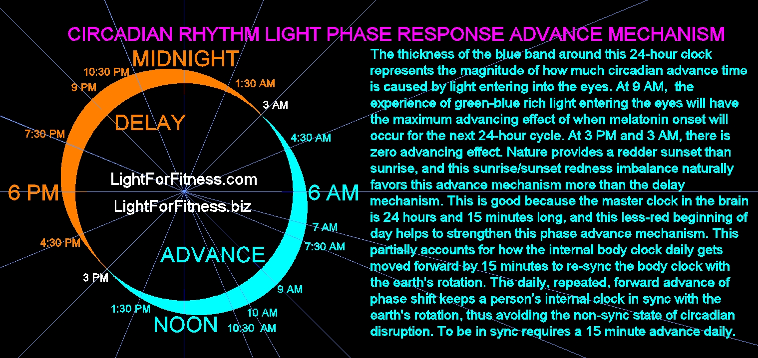 ADVANCING LIGHT PHASE RESPONSE