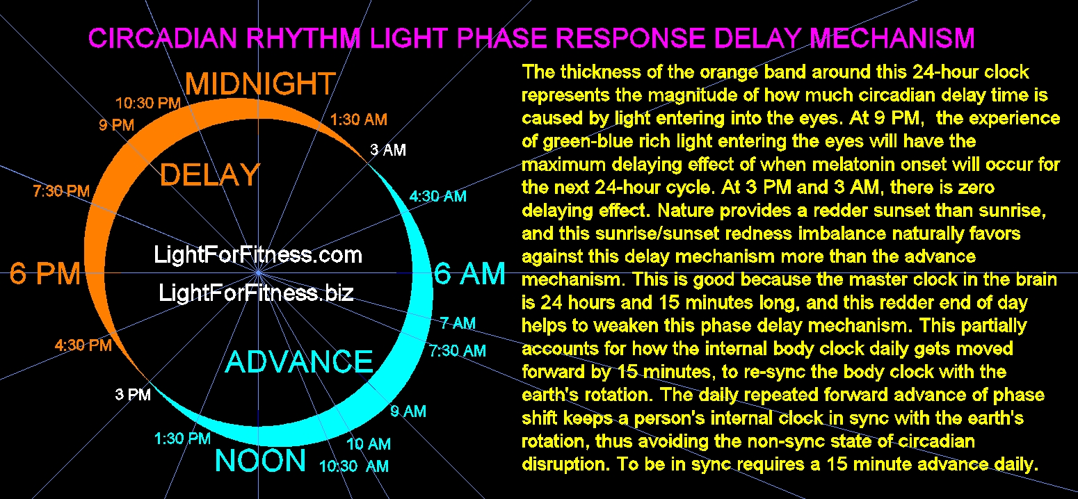 DELAYING LIGHT PHASE RESPONSE